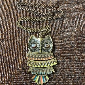 Cute, Long, Funky, and Fun Owl Charm Necklace